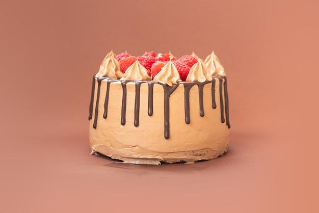 孤立した背景の上の果物とおいしい自家製チョコレートケーキ