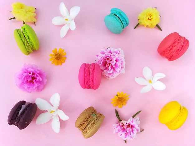 Delicious macaroons and pastel colored flowers decoration on pink background