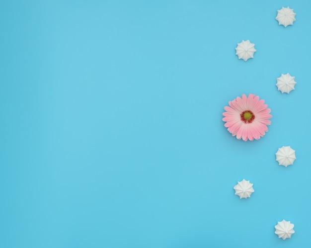 Вкусные меренги с одним цветком среди них на синем фоне