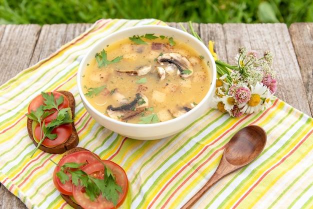 자연 속에서 닭고기와 크루통을 곁들인 맛있는 버섯 수프.