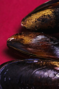 Delicious mussel close up