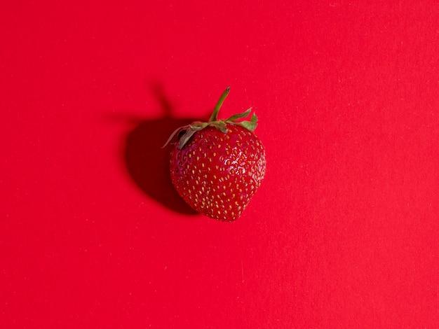 美味しい天然イチゴ