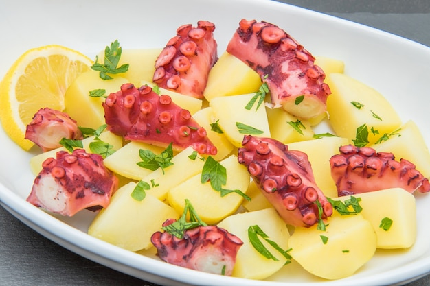 Delicious plate of octopus salad with potatoes