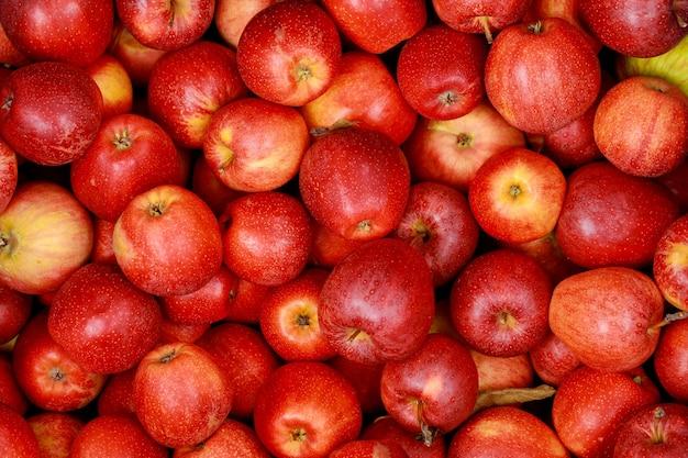 Вкусные красные яблоки. вид сверху.