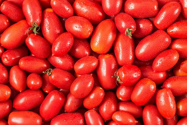 Delicious red tomatoes.