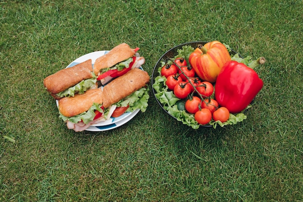 Delicious sandwiches with veggies. bowl of healthy eco veggies on the grass.