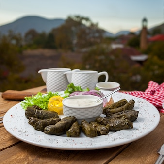 Delicious stuffed grape leaves in a plate with a village on background. side view.