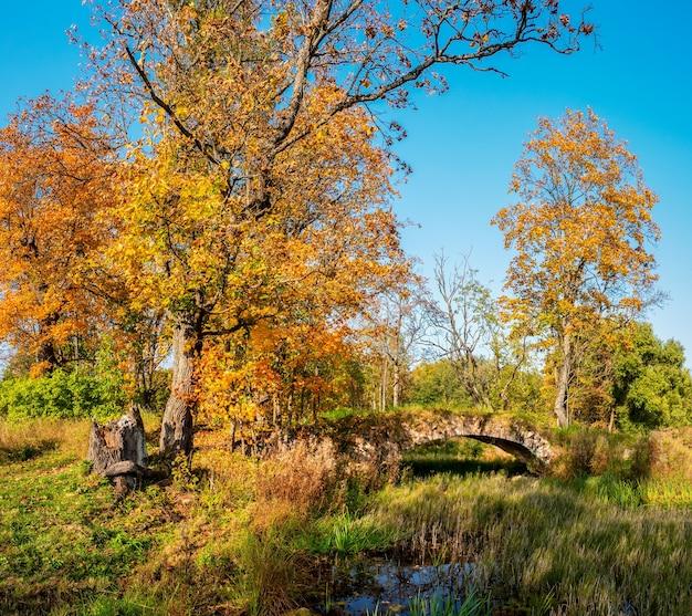 秋のデミドフスキー公園とロシアのタイツィ村の古い石の橋