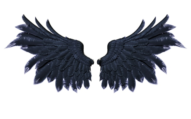 Demon wings, black wing plumage isolated on white background