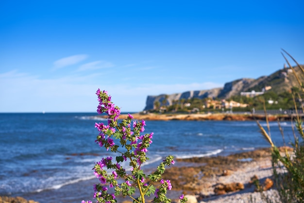 Denia las rotas beach in spring at alicante