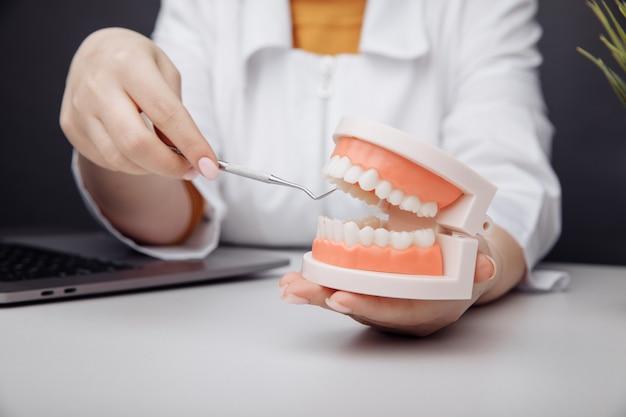 歯科コンセプト歯科用ツールと医師