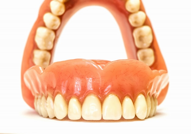 Dental dentures isolated