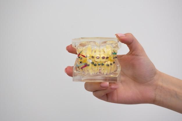 歯科検診ブレース付きの歯のクリーニングシステムは、歯科医の歯科を示しています