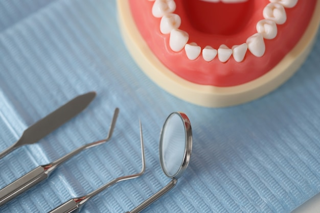 Dental instrument and artificial jaw on table diagnosis of dental diseases