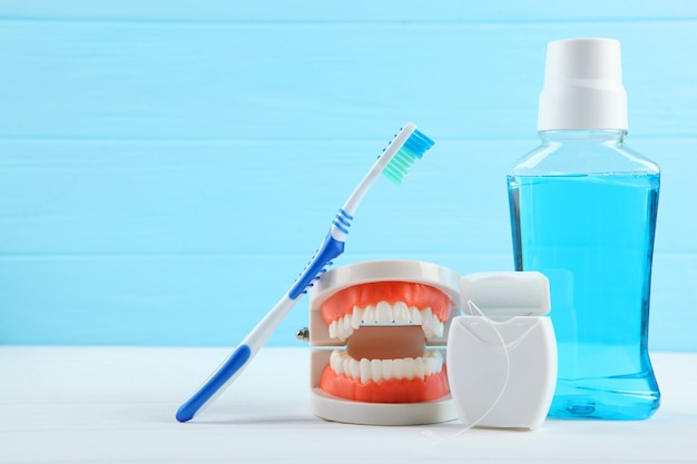 Dental model of teeth and dental care products on colored background