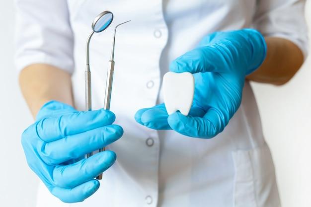 ツール、ミラー、プローブ、歯のモデルを備えた歯科医の手。歯と口腔の検査。健康、衛生、歯科、医学の概念。