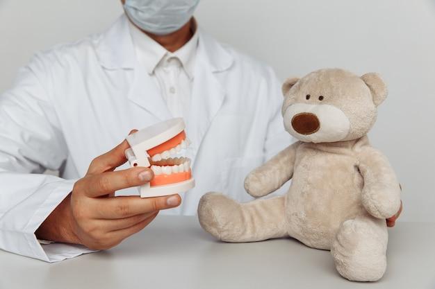 Стоматолог в маске с моделью челюсти и чучело медведя