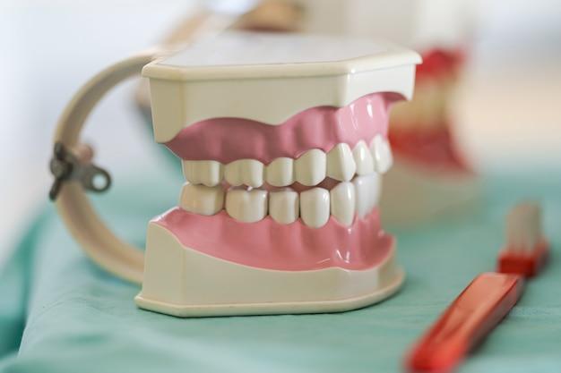 Офис дантиста, инструменты дантиста, модель зубов
