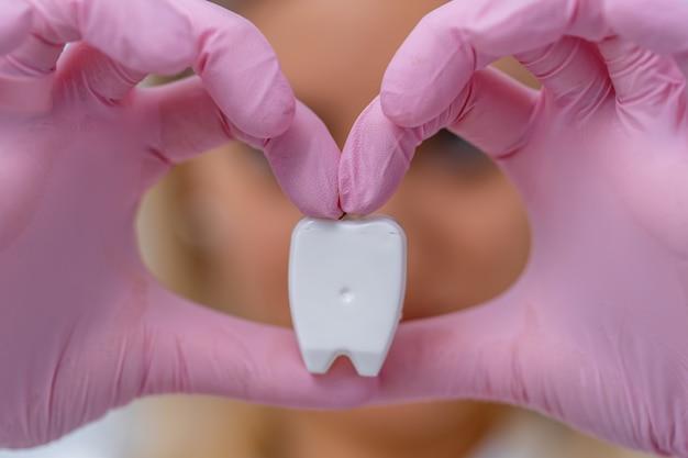 歯のモデルを保持している歯科医の手。ピンクの手袋をはめた手がハート型になります。デンタルケアのコンセプト。
