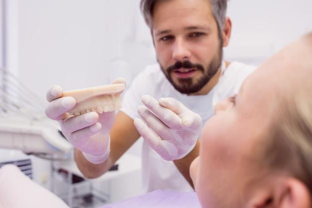 Стоматолог показывает модель протеза пациенту