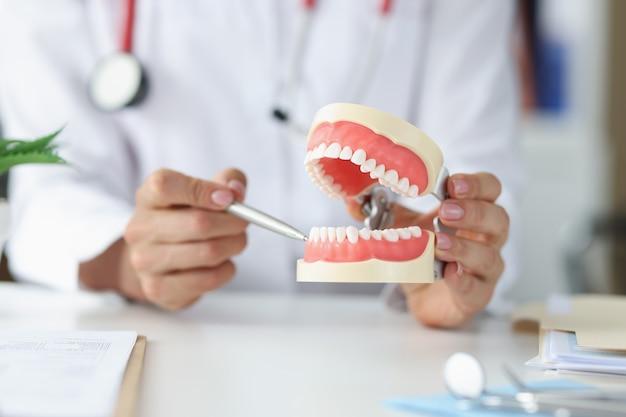 치과 의사는 인공 턱 구강 관리 개념에서 치아의 문제 영역을 보여줍니다