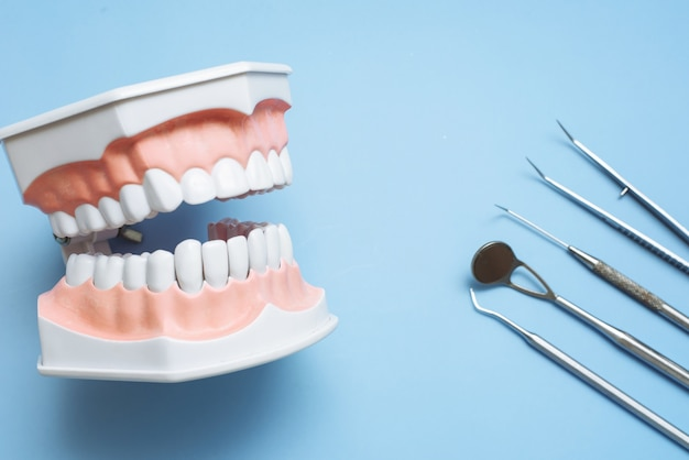 Dentist tools and artificial jaw on a blue background