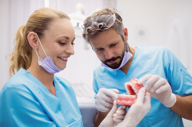 Dentists having discussion on teeth model