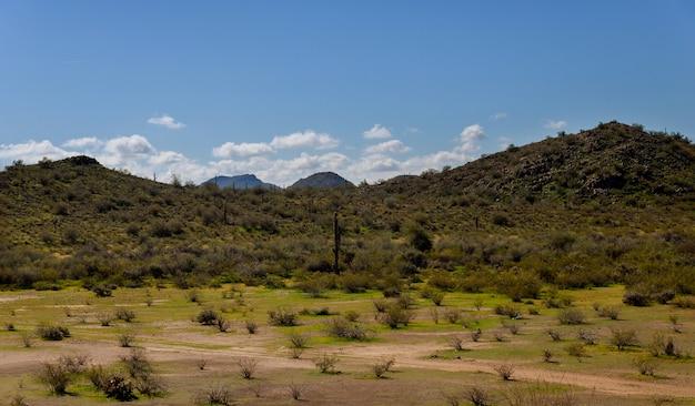 砂漠とアリゾナ近くの山