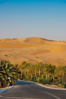 アラブ首長国連邦、アブダビのリワオアシスの砂漠の砂丘