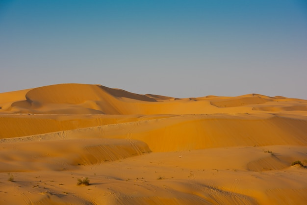 Desert dunes in liwa, united arab emirates
