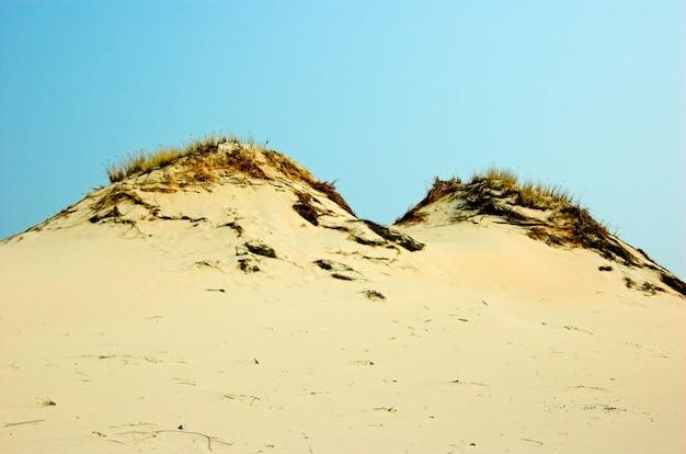 砂漠の砂丘