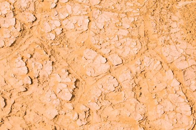 Desert landscape in morocco Free Photo