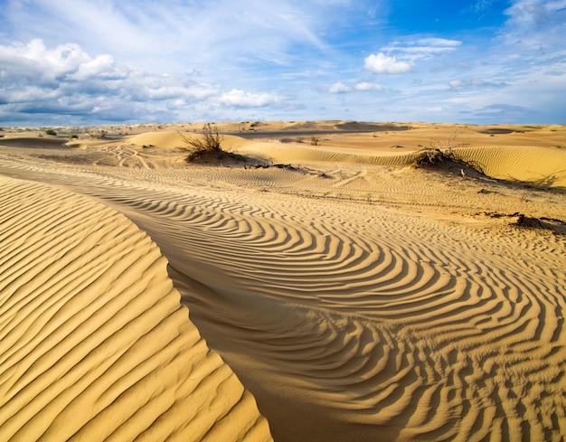 空と砂漠の風景