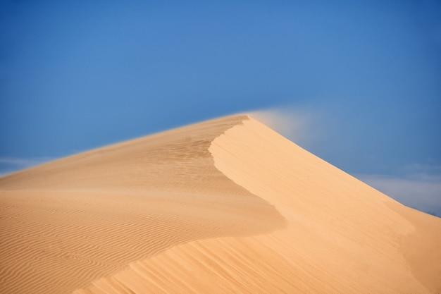 Пустыня северной африки, песчаные барханы.