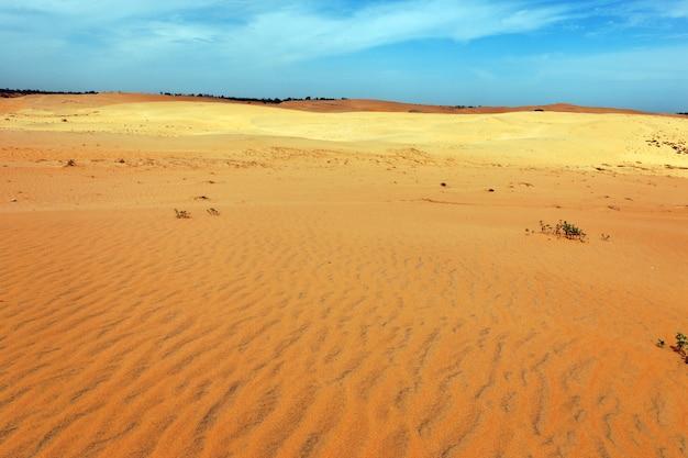 화창한 날에 사막
