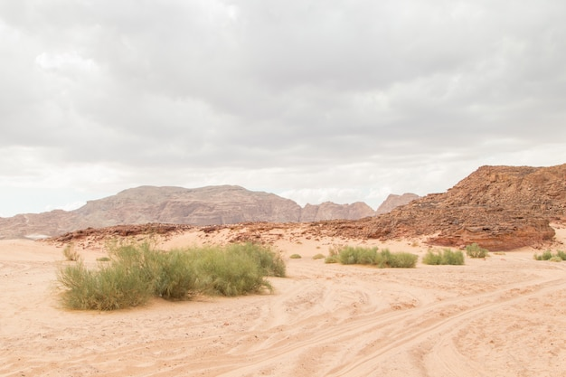 Desert, red mountains, rocks and cloudy sky. egypt, color canyon.
