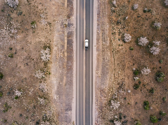 Desert road with bushes and cactuses aerial