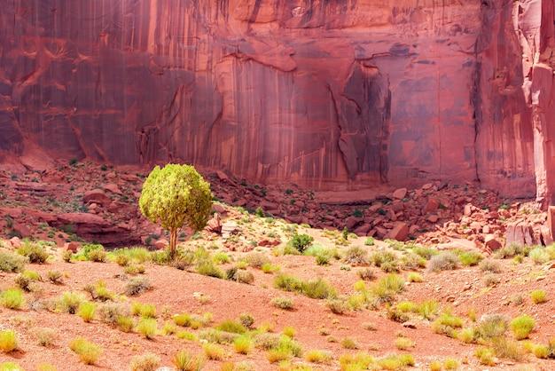 赤い石の山と砂漠の砂