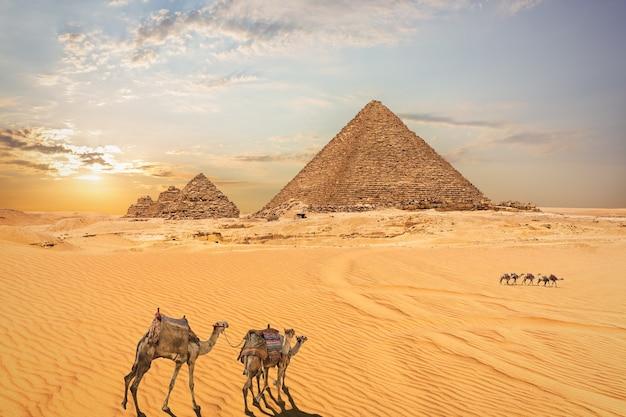 エジプト、ギザのピラミッドの砂漠の風景。