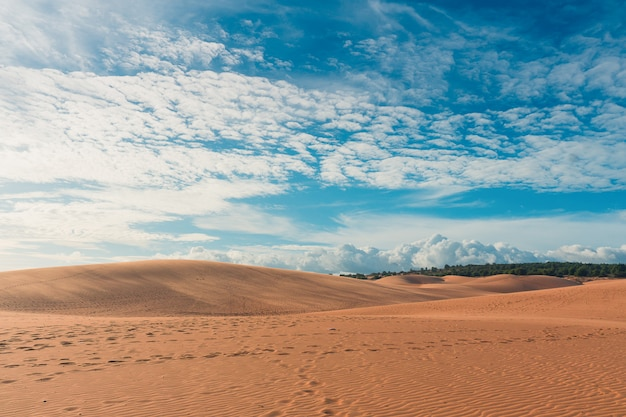 Desert with blue sky