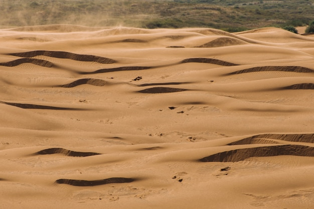 Desert with sand dunes on a clear sunny day. desert landscape.