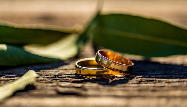 Designer wedding rings on a wooden bokeh background in panoramic banner format with copy space and selective focus.