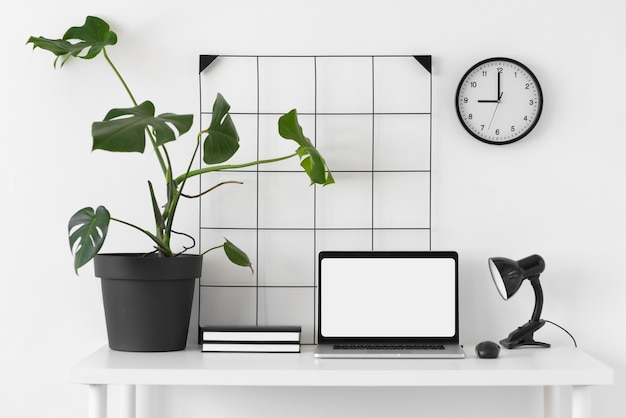 Desk arrangement with laptop and plant
