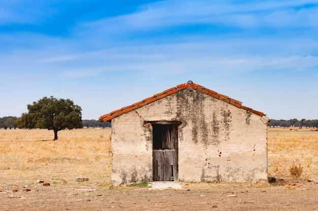 Desolate old house with a wooden door