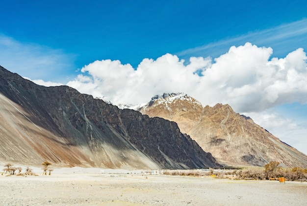 Dessert sand dune with daylight and cloudy blue sky, nubra valley in leh ladakh, northern india