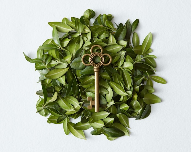 Destination concept. golden key from apartment, flat, future, etc. vintage golden key represented in middle among green leaves background.