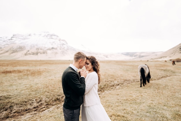 Destination iceland wedding photo session with icelandic horses the groom hugged the brides hands in