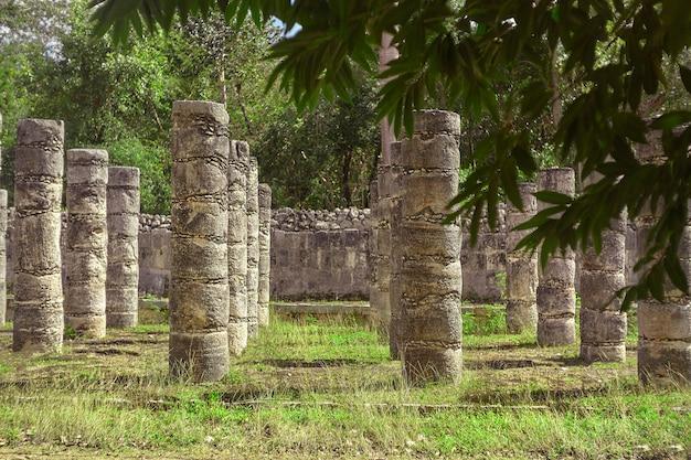 メキシコのチチェンイツァの考古学複合施設にある戦士の神殿の柱の植生によってフィルタリングされた詳細