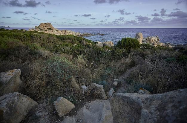 Деталь природного, скалистого и частично покрытого средиземноморской растительностью: естественный ландшафт побережья южной сардинии.