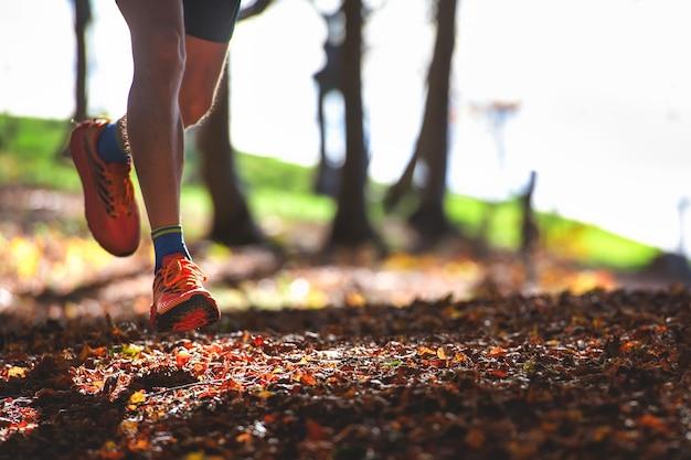 乾燥した葉の間の森の中のランナーの靴の詳細